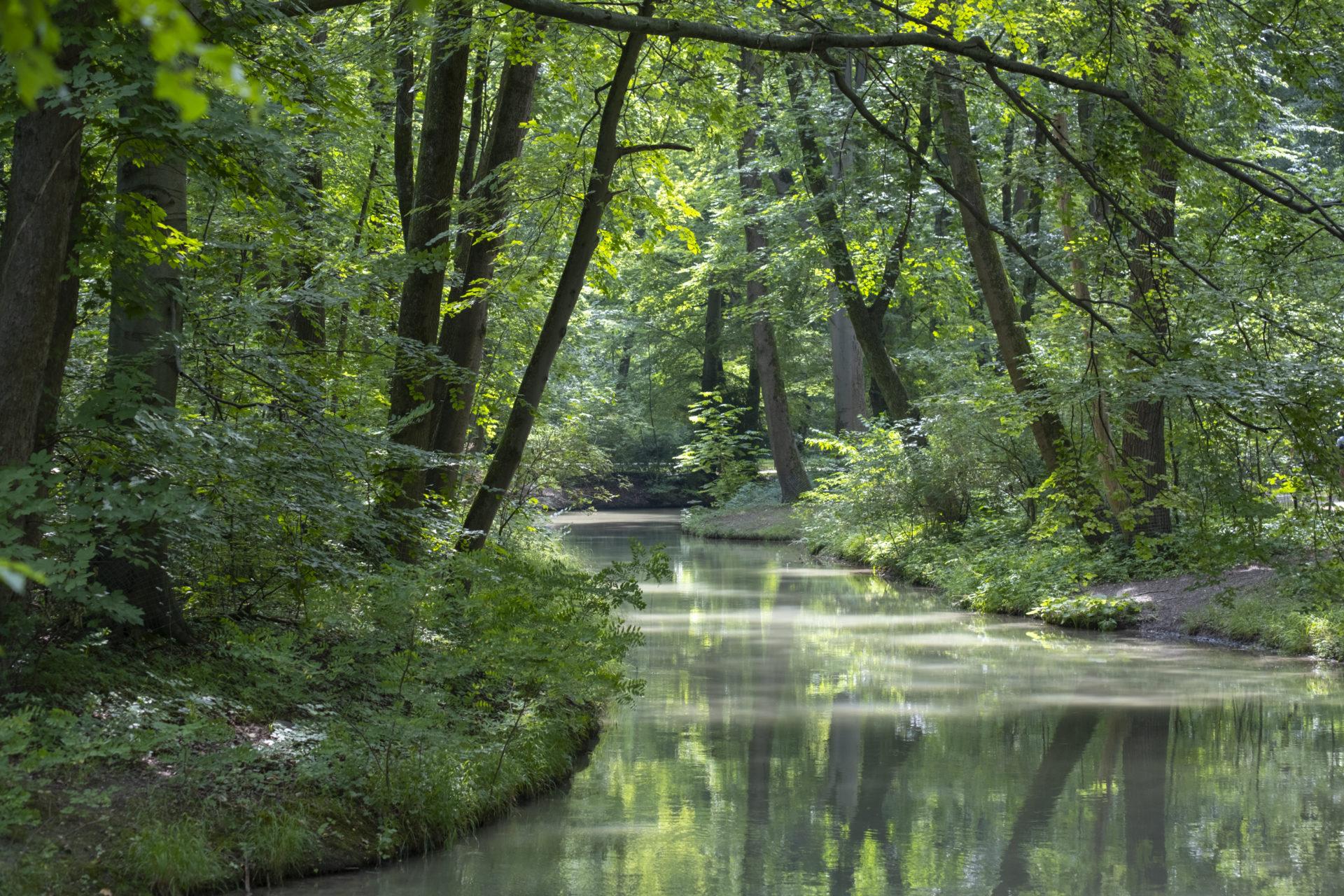 Stilla vattendrag