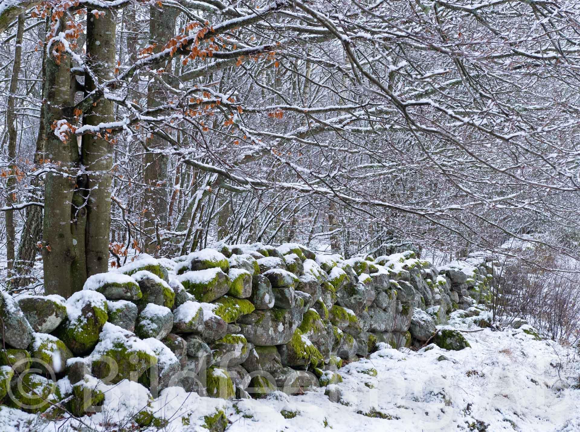Stenmur vintertid